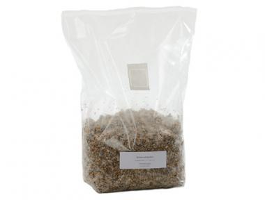 Kräuterseitling Brut 1,9 kg Großpackung