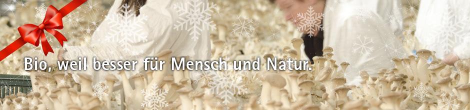 Banner Weihnachten 6